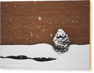 Snow Wall Wood Print by Tim Buisman