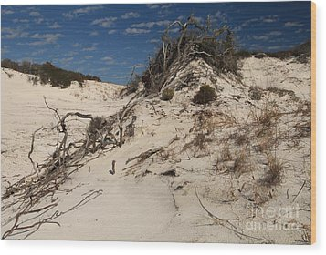 Snow White Dunes Wood Print by Adam Jewell