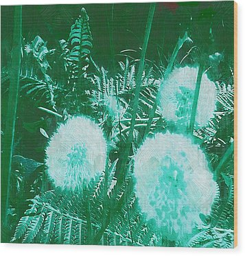 Snowballs In The Garden Wood Print by Pepita Selles