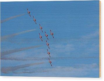 Snowbirds Wood Print by Matt Dobson