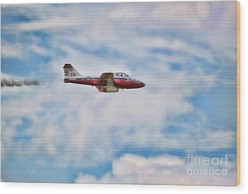 Wood Print featuring the photograph Snowbirds Number 9 by Cathy  Beharriell