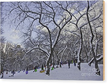 Snowboarders In Central Park Wood Print by Madeline Ellis