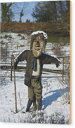 Snowcapped Scarecrow Wood Print by Anne Gilbert