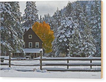 Snowed In At The Ranch Wood Print by Mitch Shindelbower