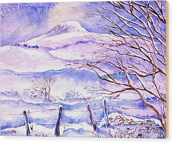 Snowfall On Eagle Hill Hacketstown Ireland  Wood Print by Trudi Doyle