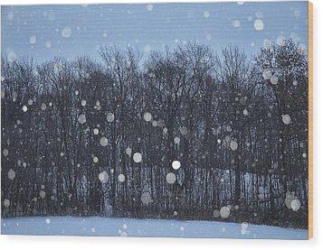 Snowfall Treeline Wood Print