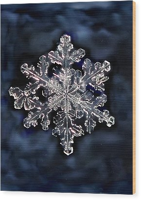 Snowflake Blue Wood Print