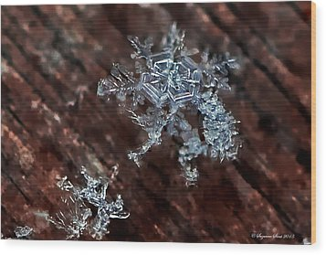 Snowflake Wood Print by Suzanne Stout