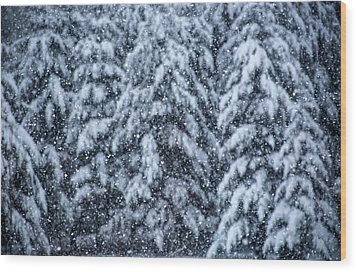 Snowflakes Wood Print by Dennis Bucklin