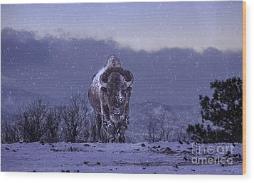 Wood Print featuring the photograph Snowflakes Falling On My Head by Kristal Kraft