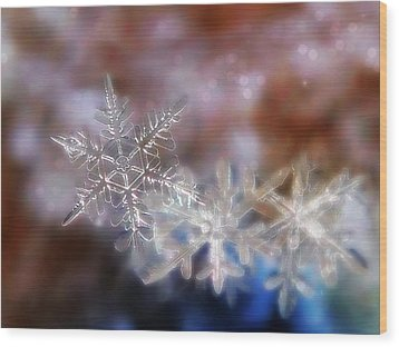 Snowflakes Wood Print by Lorella  Schoales