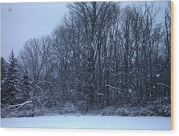 Snowing Wood Print by Barbara Giordano