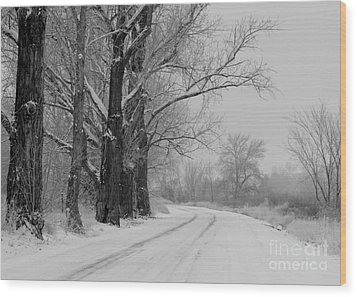 Snowy Country Road - Black And White Wood Print by Carol Groenen