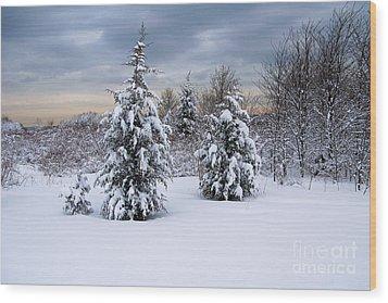 Snowy Dawn Wood Print by Deborah  Bowie