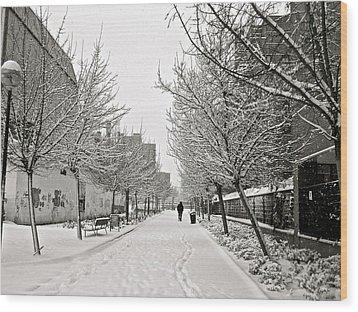 Snowy Day In Madrid Wood Print by Galexa Ch