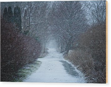 Snowy Day In Newport Wood Print by Allan Millora
