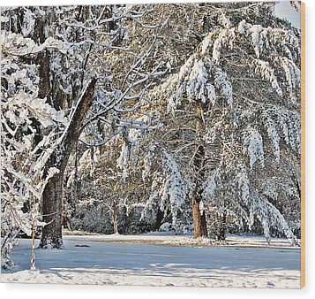 Wood Print featuring the photograph Snowy Day by Linda Brown