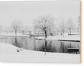 Snowy Day On Man Made Pond Wood Print