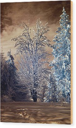 Snowy Day Wood Print by Rebecca Parker