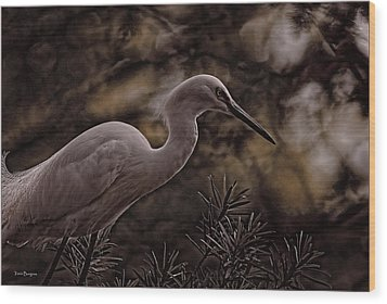 Wood Print featuring the photograph Snowy Egret 002 by Travis Burgess