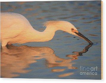 Snowy Egret Mirror Wood Print