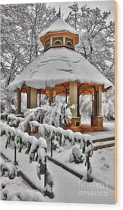 Snowy Gazebo - Greensboro North Carolina I Wood Print by Dan Carmichael