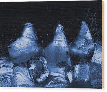 Snowy Ice Bottles - Blue Wood Print by Sami Tiainen
