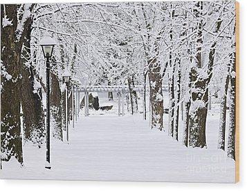 Snowy Lane In Winter Park Wood Print by Elena Elisseeva