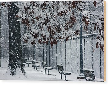 Wood Print featuring the photograph Snowy Leaves by Andy Lawless