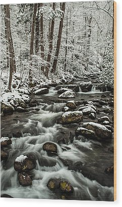 Wood Print featuring the photograph Snowy Mountain Stream by Debbie Green