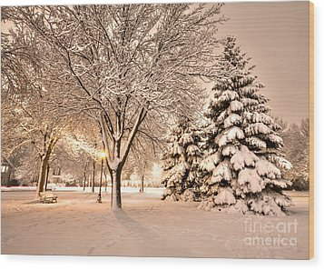 Wood Print featuring the photograph Snowy Night At Windom Park by Kari Yearous