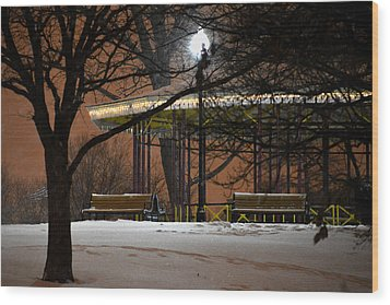 Wood Print featuring the photograph Snowy Night In Leone Riverside Park by Bill Swartwout