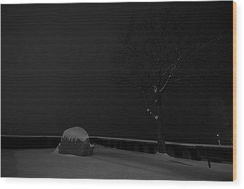 Snowy Night Wood Print by Mike Horvath
