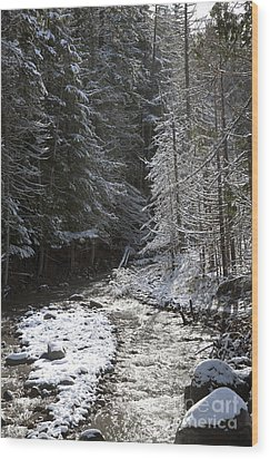 Snowy Oregon Stream Wood Print by Peter French