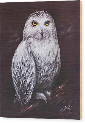 Wood Print featuring the drawing Snowy Owl In The Night by Patricia Lintner