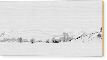 Wood Print featuring the photograph Snowy Panorama by Liz Leyden