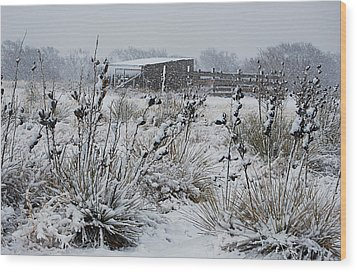Snowy Pasture Wood Print by Melany Sarafis
