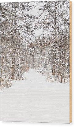 Snowy Path Wood Print by Mary Timman