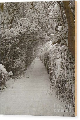 Wood Print featuring the photograph Snowy Path by Vicki Spindler