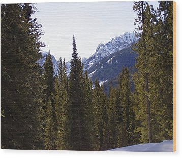 Snowy Peaks Wood Print by Yvette Pichette
