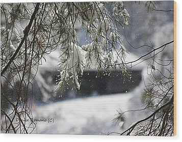 Snowy Pine Wood Print by Denise Romano