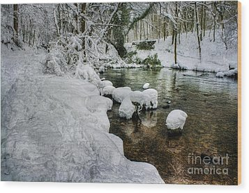 Snowy River Bank Wood Print