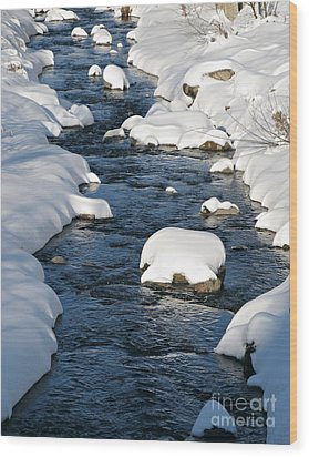 Snowy River View Wood Print by Kiril Stanchev