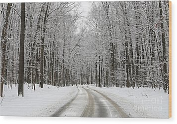 Snowy Road In Oak Openings 7058 Wood Print by Jack Schultz