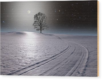 Wood Print featuring the photograph Snowy Road by Larry Landolfi