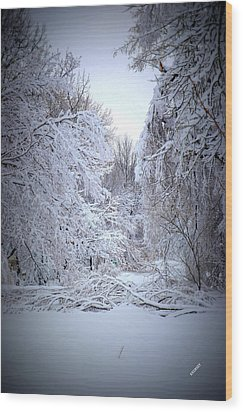 Snowy Scene Wood Print