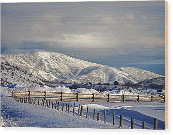 Snowy Scene Wood Print by Matt Helm