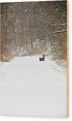 Snowy Seat Wood Print by Andrea Dale