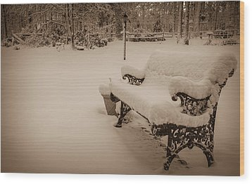 Wood Print featuring the photograph Snowy Sepia by Glenn DiPaola