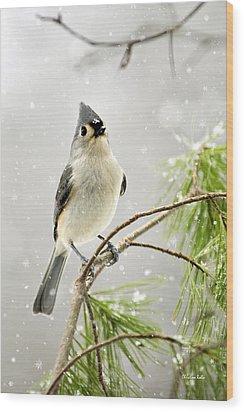 Snowy Songbird Wood Print by Christina Rollo